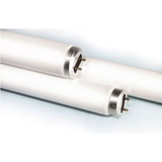 "Fluorescent Tube 18""15WT8"